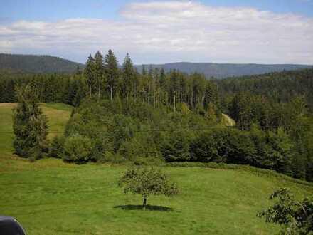 Traumlage mit Blick auf endlose Wälder