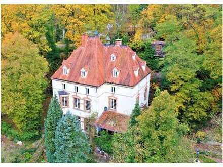 Modernisiertes Herrenhaus zur Nutzung als Pension, Tagesklinik, Beautyfarm ...