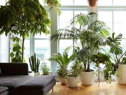Zimmer in Haus-WG mit Garten, ruhig, harmonisch, Co-Living (u.a. für Berufstätige)