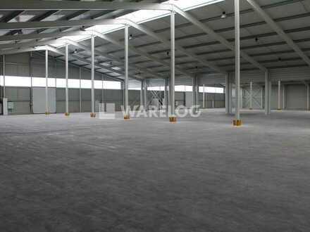 NEUBAU // ca. 1.000 - 2.000 qm Hallenfläche zu vermieten!