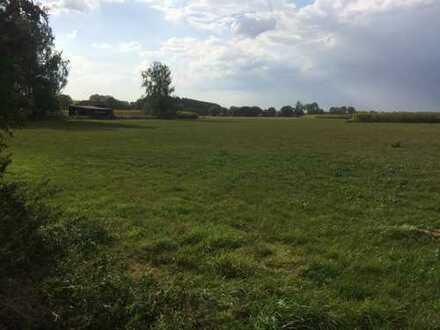 Wiesen in Burgrieden-Rot