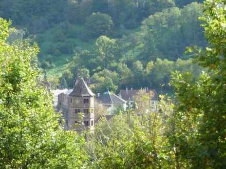Attraktive Kapitalanlage, sonnige 3 Zimmer Maisonettewohnung in Waldrandlage.