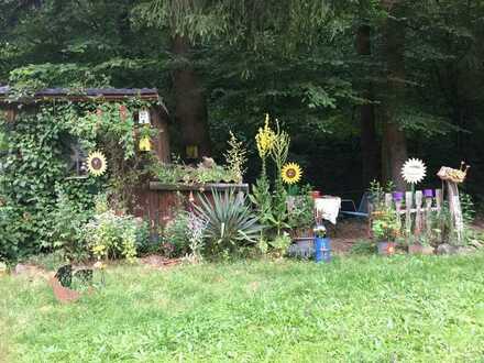 Single-WHG mit Gartenanteil - sehr ruhig in Eberbach-Friedrichsdorf