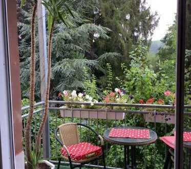 Idylische 3ZKB, Einbauküche, Balkon, in Dietrichingen, 5min bis Outlet