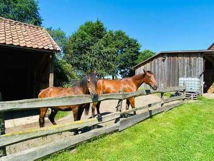 Traumhaftes Anwesen - Viel Platz für z.B. Pferdehaltung/-Zucht mit Weide - Reithalle/-Platz mögl.