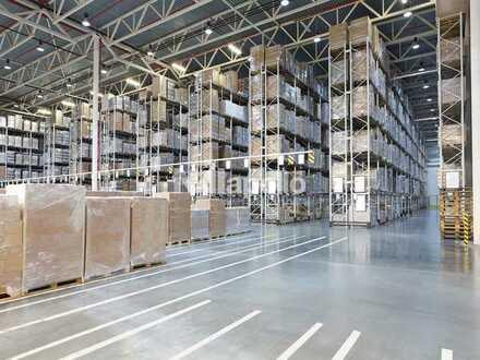 Ca. 50.000 m² Lager- / Logistikfläche | 11 m UKB | 61 Rampentore | Provisionsfrei!