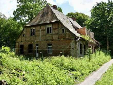 Historische Gutsanlage - 4,5 ha Land - Denkmal-AfA