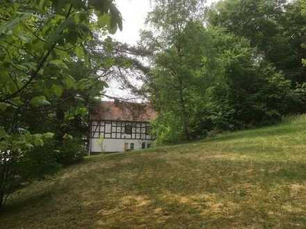 Historische Hoflage mit 2 Gebäuden und Neubaumöglichkeit - am Rande des Burgwaldes!