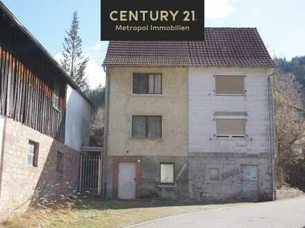 Zwei Doppelhaushälften zum renovieren