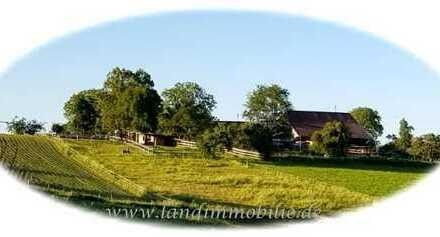 RESERVIERT-Bauernhaus in absolut traumhafter Alleinlage im Mainhardter Wald