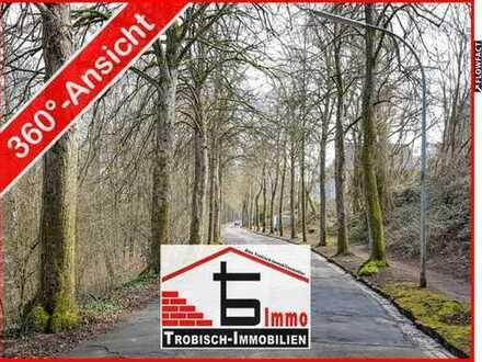 Über 3200 qm Bauplatz für große Projekte | Trobisch-Immobilien.