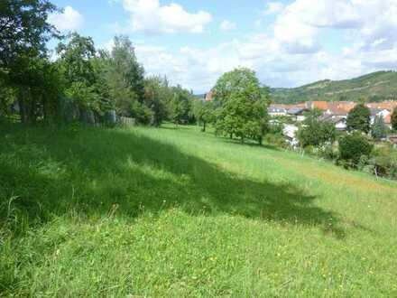 Staudernheim/Nähe Bad Kreuznach - Großes Baugrundstück mit Fernblick -