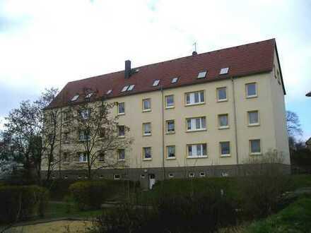 Schöne Wohnung mit TLB nahe dem Auewald