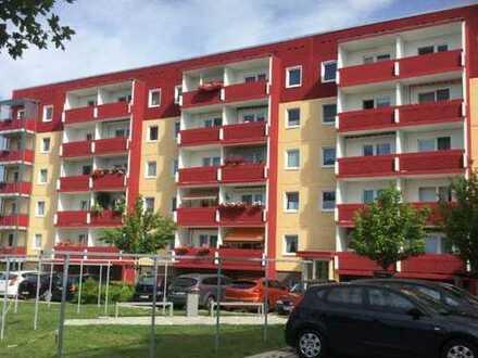 3 - Raum - Wohnung in Torgelow