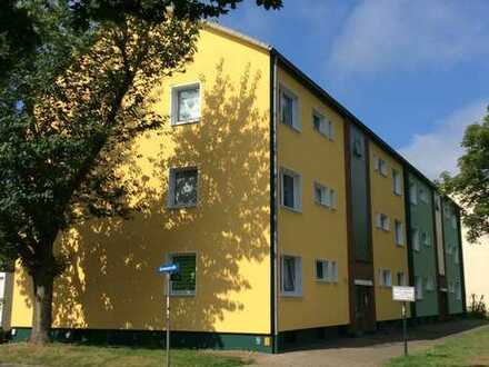 Wohnung im Grünen und doch zentral - ruhig, hell, warm, günstig !