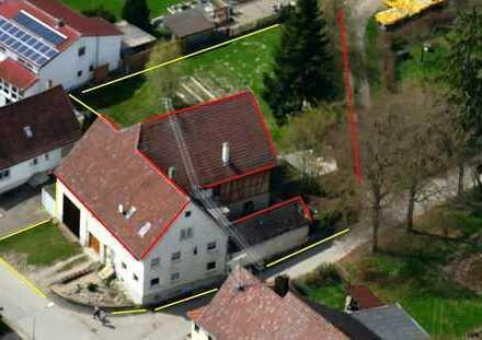 Haus / Bauernhaus mit Scheune und Nebengebäuden in Oberstadion Mundeldingen
