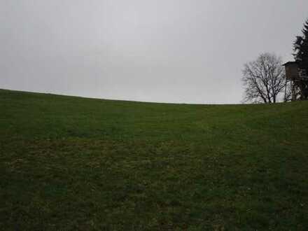 Landwirtschaftsfläche / Gemarkung Mirskofen