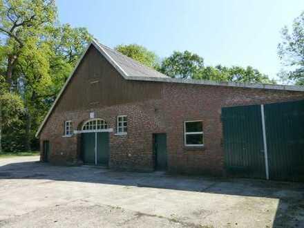 Kleines Gewerbe geplant ? 300 m² Lagerraum/Werkstatt ab sofort!