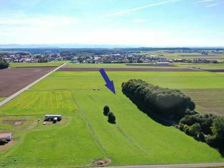 Ca. 7116 m² landwirtschaftliche Fläche/Wiese nähe Hofstetten zu verkaufen