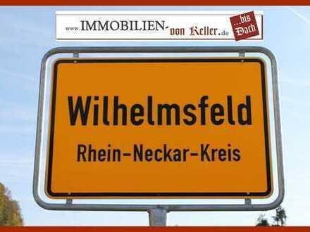 Ein - oder Mehrfamilienhaus in bester Hanglage im Luftkurort Wilhelmsfeld (KP: REDUZIERT)