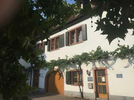 Schöne, vollständig renovierte 3-Zimmer-Wohnung in Kallstadt