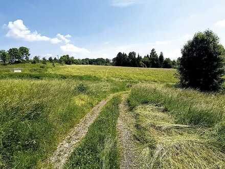 unbebautes Grundstück mit Weg
