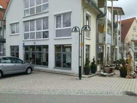 **Wunderschöne, helle 2 Zimmerwohnung** + Stellplatz und Balkon