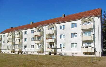 Sonnige 3 Zimmer-Wohnung mit Balkon, Garage, Carport und Schuppen zu vermieten