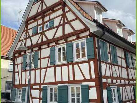 Historisches Gebäude mit tollem Wohnklima
