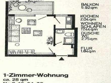 Modernisierte 1-Zimmer-Appartment-möbliert mit Balkon und Einbauküche in Mannheim-Innenstadt