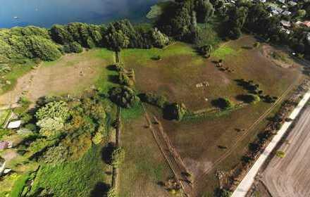 Landwirtschaftsfläche am Tollensesee Wustrow (Penzlin)