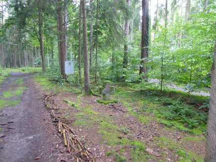 14.280 m² großes Waldgrundstück bei Großhaslach