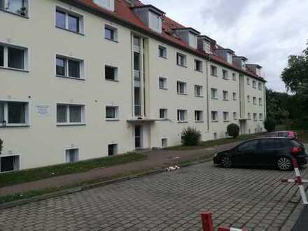 1-Zimmer Whg. Oberes Frauenland! Nähe Universität!