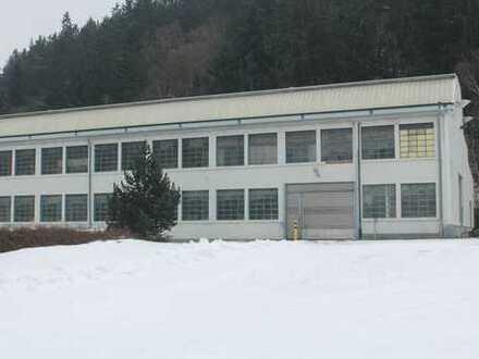 Produktionshalle/Lagerhalle ehem. Kranwerk Nähe A4