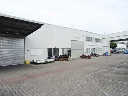 3- Hallen mit unterschiedlichen Größen in Mühlheim/Main