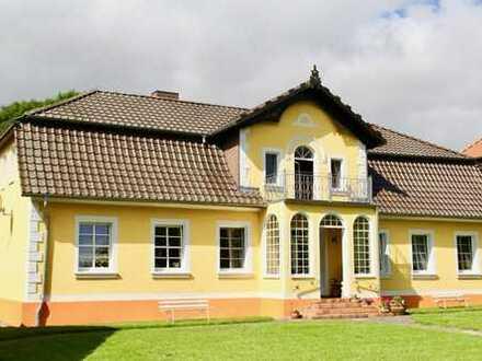 HORN IMMOBILIEN ++ Traumhaus in Badresch bei Groß Miltzow am Rand der Brohmer Berge