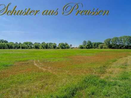 Schuster aus Preussen - Malerisches Oderbruch - ca. 740 m² großes Baugrundstück mit traumhaftem B...