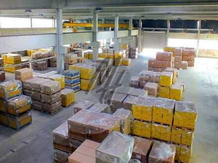 KEINE PROVISION ✓ Lagerflächen (880 m²) & optional Büroflächen zu vermieten