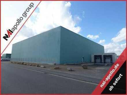 1600 m² Lager | 4 x Rampe | direkt an der BAB 45 | ab SOFORT | zu vermieten