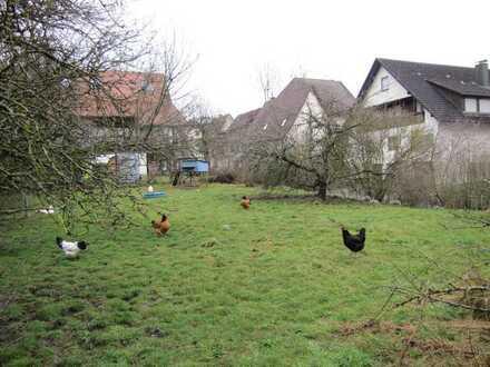 Grundstück in Wildberg-Effringen zu verkaufen!