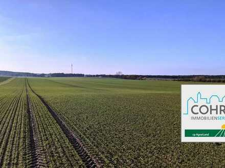 Ackerbaubetrieb mit Eigenjagd, ca. 800 ha