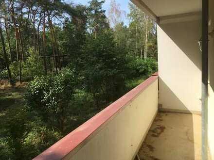 helle und ruhige 2-Zimmer-Wohnung mit Pkw-Stellplatz und großem Balkon
