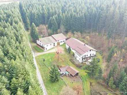 Waldrandlage: Anwesen mit 2 Wohnhäusern und Nebengebäuden