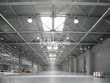 11 Überladebrücken | Lager + Bürofläche | viel Freifläche