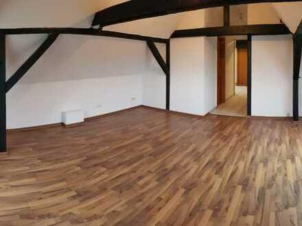 Schicke kleine Dreiraumwohn. mit guter Raumaufteil. + gr. 20 m² Wohnzi. + Laminat + Einbauküchenopt.