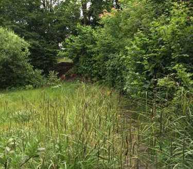 Das letzte freie Grundstück, Südausrichtung und eigener Wald - eigener Abenteuerspielplatz!