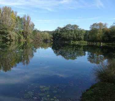 Seltene Gelegenheit 30min. von München Baggersee mit 13416qm Anlagenobjekt,für Angelvereine oder pri
