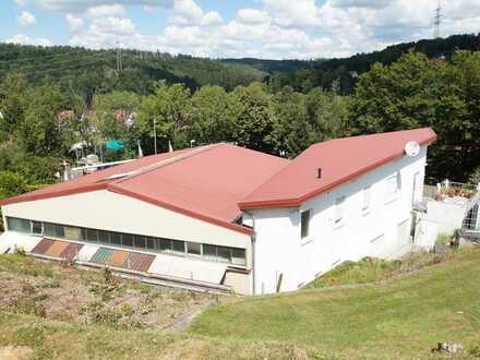 Gewerbehalle 225 qm, 3 Tore, 100 qm exklusives Büro + mediterrane 100 qm OG Wohnung in Gründau