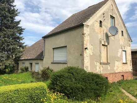 Wohnen und Arbeiten (historisch ältere Schmiede) mit Einfamilienhaus
