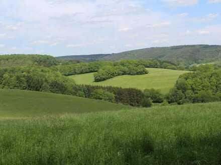Landwirtschaftliches Anwesen mit vielen Möglichkeiten